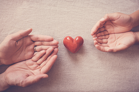 image with Two sets of hands reaching out with a red heart in between
